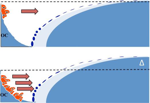 """Fig. 5.""""Dual-action"""" konseptet. Konvensjonelle antiresorptiva minker antallet av osteoklaster ved å øke apoptose av disse celler. Dette medfører nedsatt benresorpsjon, men også nedsatt benformasjon pga. nedsatt mengde kopplingsfaktorer. Behandling med Kathepsin K antagonister medfører tvert imot en økning av antallet av osteoklaster, men de har nedsatt aktivitet, slik at mindre ben resorberes. Det økte antall celler sikrer økt sekresjon av kopplingsfaktorer (piler) og dermed en benformasjon som ligger langt over benresorpsjonen. Dette medfører en pos. remodeleringsbalanse (Δ) i hver remodelerings syklus."""