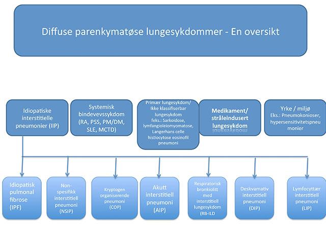 Figur 1: Klinisk klassifikasjon av diffuse parenkymatøse lungesykdommer.
