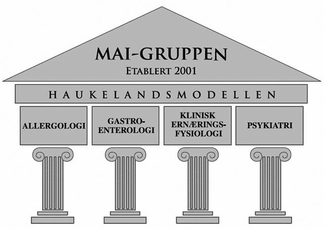 Figur 1. «Haukelandsmodellen» for tverrfaglig utredning av pasienter med selvrapportert matoverfølsomhet.  Illustrasjon: Jørgen Valeur.