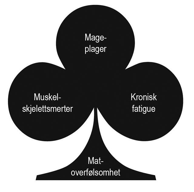 Figur 2. Mastceller «armert» med IgE-antistoffer kan være involvert i patogenesen ved IBS. Illustrasjon: Jørgen Valeur.