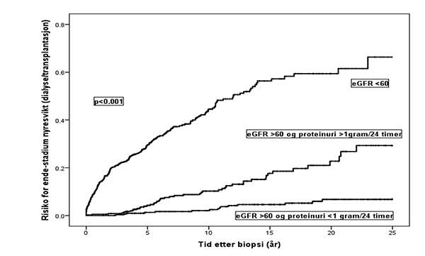 Figur 1: Risiko for endestadium nyresvikt med behov for dialyse eller transplantasjon i forskjellige prognostiske grupper av IgAN pasienter definert etter eGFR og proteinuri på diagnosetidspunkt.