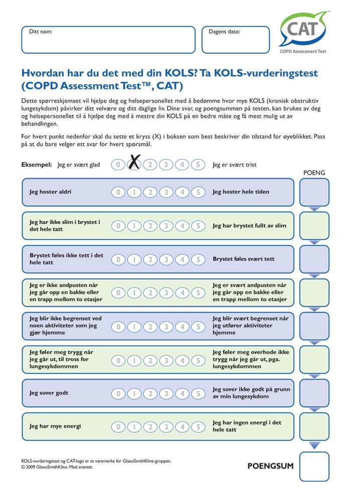 Figur 1: Pasientens vurdering av viktige KOLS symptomer.