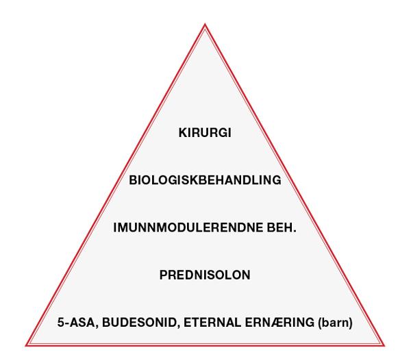 Figur_1_pyramide