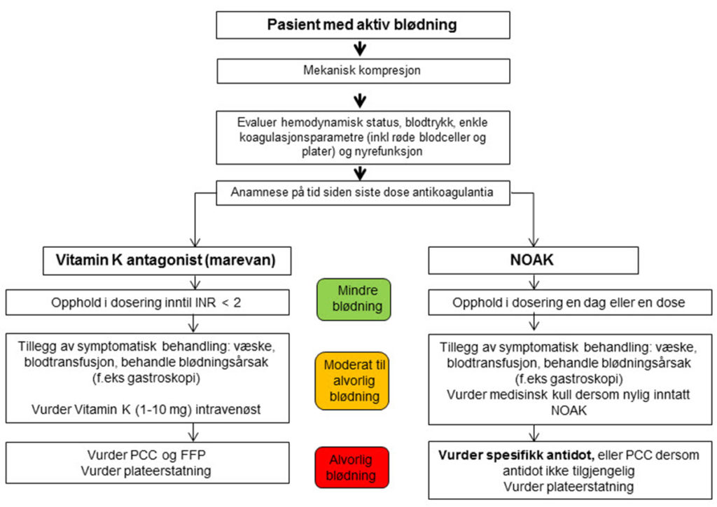 Figur 3. European Society of Cardiology sin anbefalte håndtering av blødning etter alvorlighetsgrad for pasienter på antikoagulasjons- behandling (10).