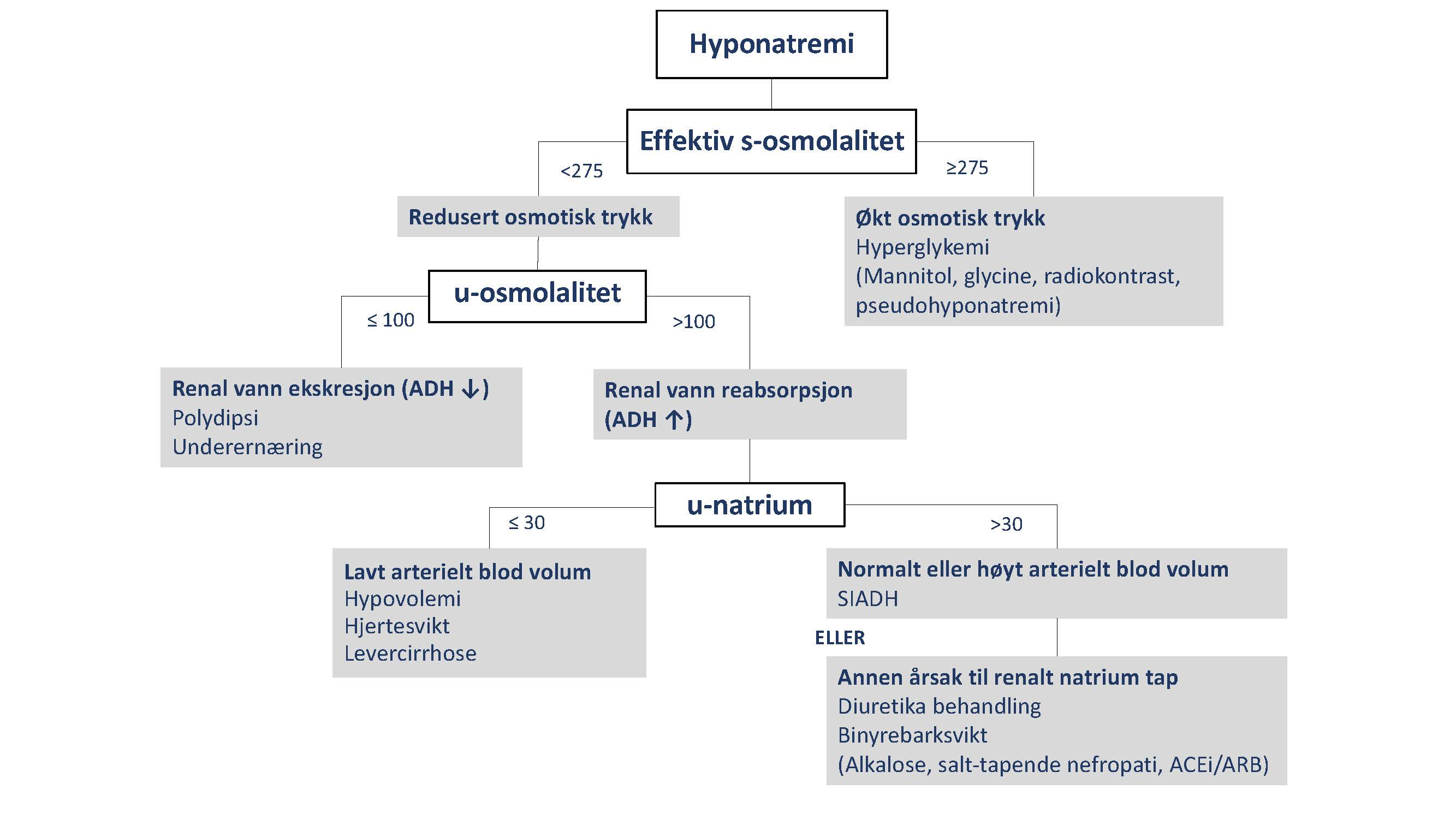 Figur 2 Tolkning av urinprøver ved hyponatremi Enheter: osmolalitet, mosm/l; u-natrium, mmol/l. Effektiv s-osmolalitet inkluderer osmoler som ikke fritt kan krysse cellemembranen og dermed bidrar til økt osmotisk trykk, vesentligst natrium, klorid, bikarbonat og glukose, mens urea og alkohol ikke bidrar.