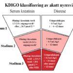 Figur 1. Inndeling av akutt nyresvikt basert på KDIGO-kriteriene. *Stigningen i serum kreatinin må inntre innen sju dager. **Stigningen i serum kreatinin må inntre innen 48 timer. NEB: Nyreerstattende behandling.