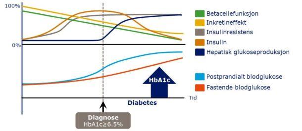 Figur 1. Gradvis utvikling av type 2-diabetes. Insulinresistens indusert av kalori-forgiftning inntreffer lenge før man får diagnosen type 2-diabetes. Betacelle- dysfunksjon markerer overgangen til mer alvorlig metabolsk sykdom. Basert på Kendall DM et al. Am J Med 2009:122(6 Suppl):S37–S50
