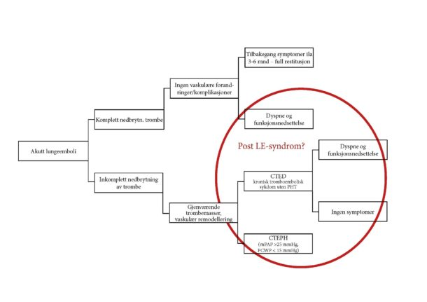 Figur 2. Flytdiagram for mulige utfall etter lungeemboli